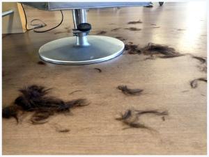 schon 3 Jahre habe ich eine Kurzhaarfrisur im Kopf- aber jedesmal beim Friseur hat mich dann doch der Mut verlassen. NICHT SO AM MITTWOCH ! Und ich fühle mich super mit den kurzen Haaren
