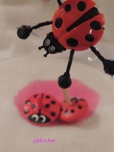 käfer2