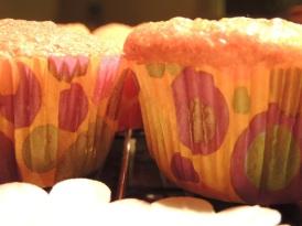 cupcakes3b