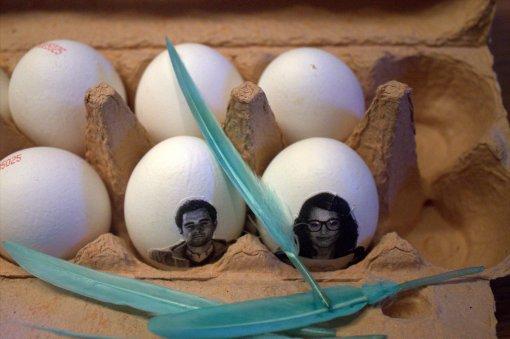 wer sitzt denn da im Eierkarton ?