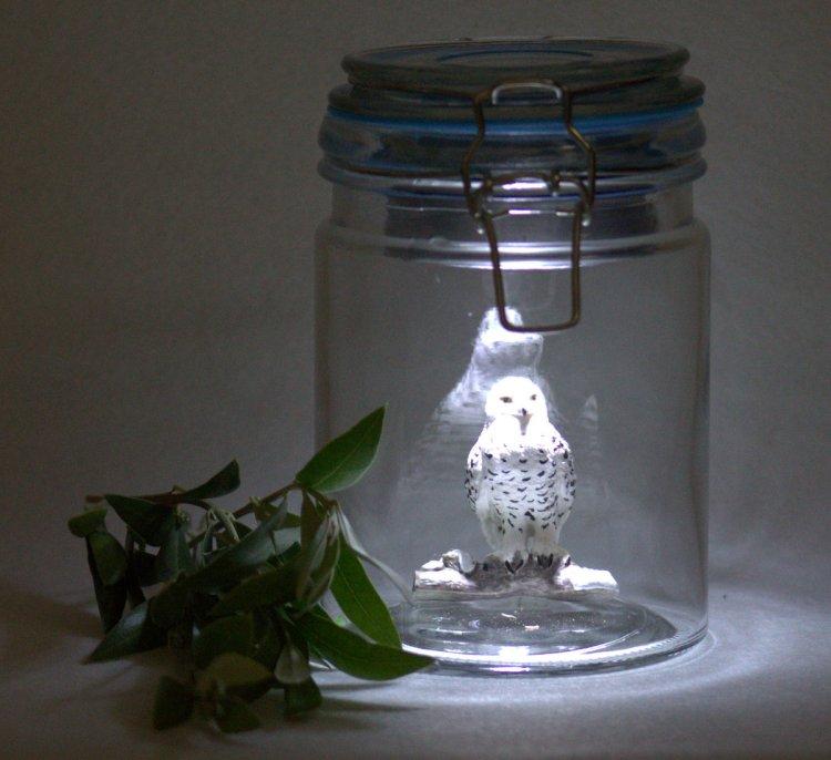 Eule im Glas